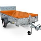 Rex_flachplane-orange